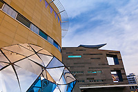Te Papa (Museum of New Zealand), Welliington, New Zealand
