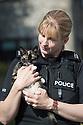 2016_08_16_police_car_cat