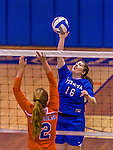 2 November 2014: Yeshiva University Maccabee Middle Blocker Marissa Almoslino, a Sophomore from Seattle, WA, in action against the Purchase College Panthers at SUNY Purchase College, in Purchase, NY. The Maccabees defeated the Panthers 3-1 in the NCAA Division III Women's Volleyball Skyline matchup. Almoslino ended her 2014 season with 44 Kills, 90 Digs and 24 Aces for the Lady Macs. Mandatory Credit: Ed Wolfstein Photo *** RAW (NEF) Image File Available ***