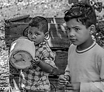 June 1974&mdash;Patterson&mdash;Editors at the Bee were interested if children were still working in the fields.  These children were not working at this apricot ranch near Patterson but their parents couldn&rsquo;t get day care for their children so they brought them to work.  The three boys played under the shade of a tree.  The parents came bye every few minutes to check on them.  <br /> Photo by Al Golub/Modesto Bee