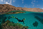 Split level of coral reef in white sandy bottom and dry topside landscape with snorkeler.