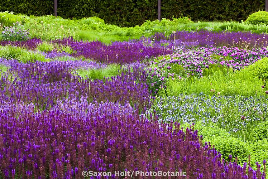 Holt 1032 029 cr2 photobotanic stock photography garden for Designing with plants oudolf