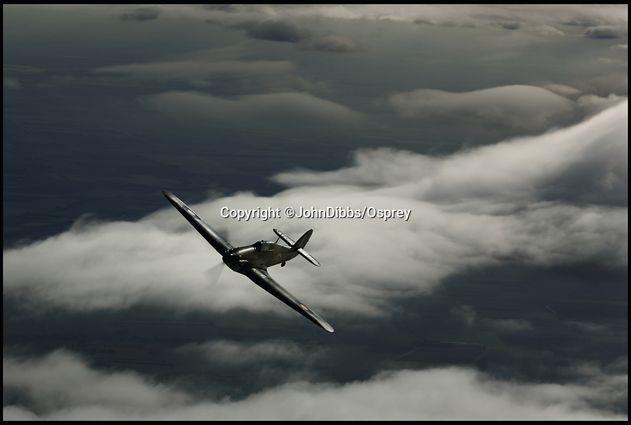 BNPS.co.uk (01202 558833)<br /> Pic: JohnDibbs/Osprey/BNPS<br /> <br /> A sight that would have send chills up Luftwaffe bomber crew spines during the summer of 1940 - Hurricane LF363 makes a 'firing pass' of the camera plane.<br /> <br /> Last of the Few - A photographer's stunning new book is a tribute to the last Hawker Hurricane's - the true workhorse of the Battle of Britain.<br /> <br /> Only 13 WW2 Hurricanes are still airworthy today, compared to over 60 of their more glamorous counterpart the Spitfire.<br /> <br /> But during the Battle of Britain there were in fact twice as many Hurricane's as Spitfires taking on Hitlers Luftwaffe in the skies over southern England.<br /> <br /> The Hurricane may be viewed as less glamorous than the Spitfire, but these stunning photographs reveal just how majestic it was in full flight.<br /> <br /> Photographer John Dibbs has got up close and personal to the legendary fighter planes in order to capture them like never before.<br /> <br /> His 10 year quest for surviving Hurricanes took him all over the world and he photographed them in England, France, the United States and New Zealand.<br /> <br /> Using the skill and experience of highly experienced RAF and civilian pilots, Mr Dibbs was able to fly to within 15ft of some of the last remaining Hurricanes - with breath-taking results.<br /> <br /> There was a fair degree of skill involved as he took the photos from the canopy of a Second World War trainer aircraft which was travelling at 200mph while confronting wind blast.<br /> <br /> The thrilling photos were taken for an a definitive history of the Hurricane which is told by Mr Dibbs and aviation historians Tony Holmes and Gordon Riley in their new book Hurricane, Hawker's Fighter Legend.