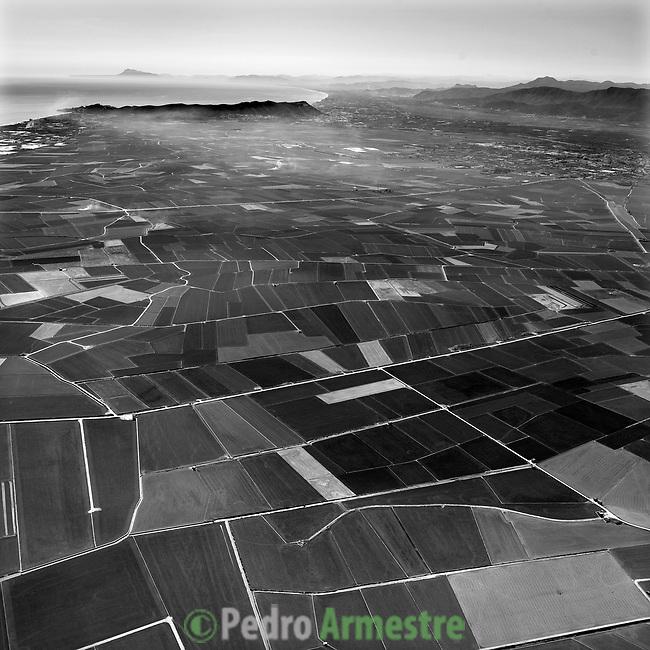 ALBUFERA DE VALENCIA-C.VALENCIANA. 2008-04-04. (C) Pedro ARMESTRE