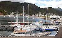 Picton, leisure and small craft harbour, South Island, New Zealand. 201004135374..Copyright Image from Victor Patterson, 54 Dorchester Park, Belfast, United Kingdom, UK. Tel: +44 28 90661296. Email: victorpatterson@me.com; Back-up: victorpatterson@gmail.com..For my Terms and Conditions of Use go to www.victorpatterson.com and click on the appropriate tab.