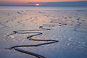 Tidal mudflats in the Humber estuary reflecting the setting sun. East Yorkshire, England, UK.