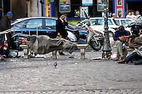 Roma 18 Settembre 2006.Senza fissa dimora in viale Trastevere.Rome, September 18, 2006.The homeless in Viale Trastevere