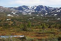 Sildratur, fra Vekta i Selbu til Sildra øverst i Sondalen i Stjørda, innom mange gamle setervoller i anledning Kulturminneåret. Storskarven i bakgrunnen, sett fra nordvest. Foto: Bente Haarstad