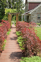 Curb appeal of Japanese maple trees and dwarf evergreens lining pathway to front door of house, with trellis, stone home, lawn, wooden walk