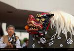 Lion Dance, Little Tokyo, Downtown Los Angeles, California