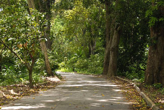Carretera que une la Playa con el pueblo de Chuao, Edo. Aragua, Venezuela