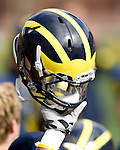 University of Michigan football over Delaware State (63-6) at Michigan Stadium on 10/17/09.