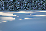 Soft curves of the deep snow drifts covering the mountain meadows in Lolo National Forest