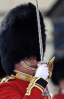 Guardsman with ceremonial sword and busby on parade in London, United Kingdom.