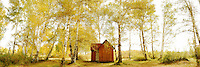 Lonely chalet can be seen standing still in the midst of the woodland in golden yellow colored setting during autumn season. China landscape fine art image taken by Paul Chong.