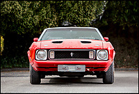 BNPS.co.uk (01202 558833)<br /> Pic: Bonhams/BNPS<br /> <br /> 1973 Ford Mustang estimated at &pound;13,000.<br /> <br /> If barn finds are the holy grail for car collectors then this selection of 12 vintage motors worth &pound;2million found languishing in a Swiss schloss is something else. <br /> <br /> The stunning collection, which boasts an iconic 1921 Rolls-Royce Silver Ghost, was started by a wealthy car enthusiast in the 1950s but since his death has remained largely untouched. <br /> <br /> However, the original owner's son recently rediscovered his father's haul and will now offer it at auction.