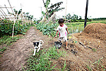 A little girl and her puppy play alongside a rice paddy in the Mekong Delta, south of Can Tho, Vietnam. Sept. 30, 2011.