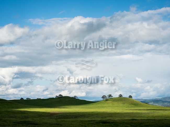 Spring landscape, eastern San Joaquin County off Shelly Road, California.