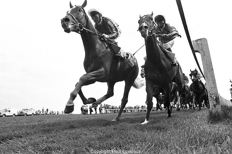 horse racing angles