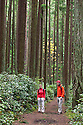 WA11157-00...WASHINGTON - Hikers in Bridle Trails State Park near Kirkland.  (MR# S1 -  K1)