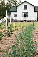 A small garden at a rural farmhouse with fencing and mulch.