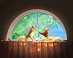 First digital photo I took. Two Singapura cats lying on curtain rod high in half-moon window. post-processing
