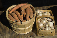Bushel of sweet potatoes and a basket of elephant garlic