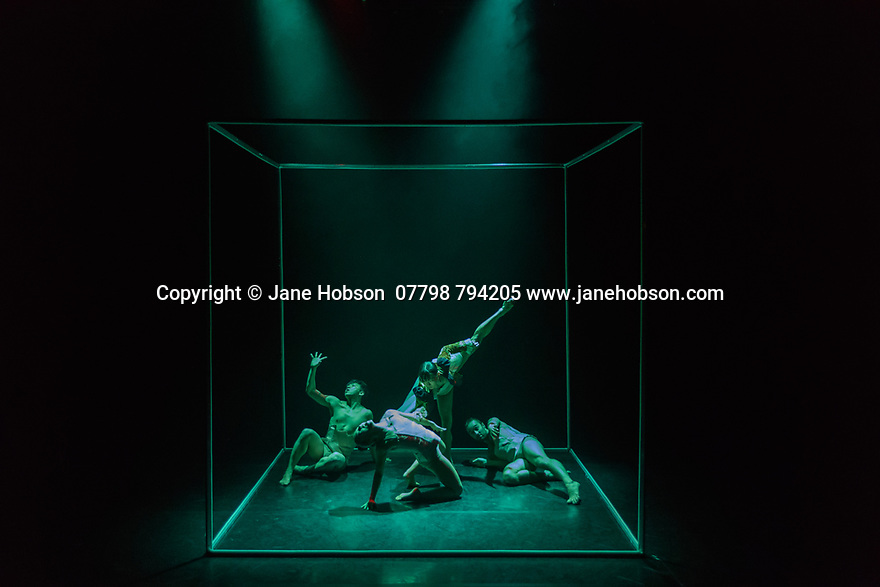 James Cousins Company presents the London premiere of ROSALIND, at The Place, from 15 to 18 March. the dancers are: Chihiro Kawasaki, Georges Hann, Heejung Kim, Inho Cho. Lighting design is by Lee Curran, costume design by Insook Choi.