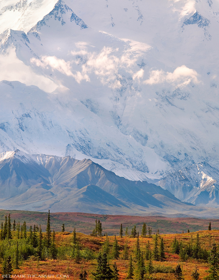 The North Face, Denali