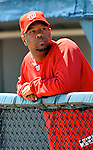 12 March 2011: Washington Nationals' pitcher Livan Hernandez looks out from the dugout prior to a Spring Training game against the New York Yankees at Space Coast Stadium in Viera, Florida. The Nationals edged out the Yankees 6-5 in Grapefruit League action. Mandatory Credit: Ed Wolfstein Photo