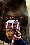A Thai Lue mahout with his Asian elephant (elephas maximus)during the Elephant Asia festival in Hongsa, Laos.