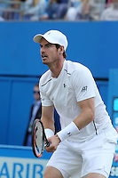 Andy Murray vs  Kyle Edmund of New Zealand, at Aegon Queens Tennis Championship June 17, 2016 in London England.<br /> CAP/GOL<br /> &copy;GOL/Capital Pictures /MediaPunch ****NORTH AND SOUTH AMERICAS ONLY***