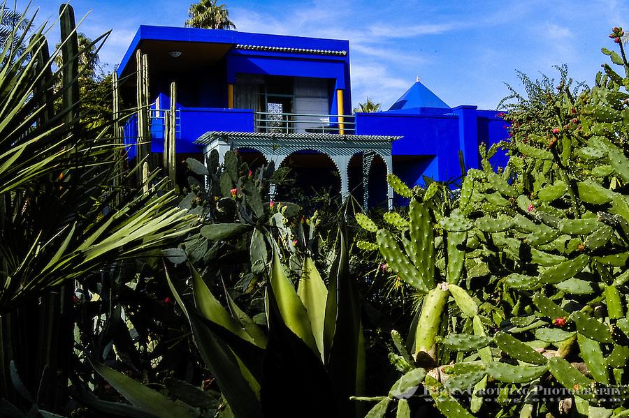 Morocco, Marrakesh. The Majorelle Garden is a botanical garden in Marrakesh. The garden has a large collction of cactus.