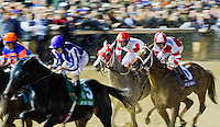 Havre de Grace, ridden by jockey Ramon Dominguez and trained by Larry Jones, fights through traffic during the Breeders' Cup Classic (G1) at Churchill Downs in Louisville, Kentucky on November 5, 2011.
