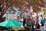 A long line formed for frozen yogurt at the festival as the afternoon sun moved the mercury up.