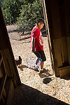 Daniel Garcia of Redwood City walks away from the chicken coop at Hidden Villa during afternoon chores at a summer residential camp.