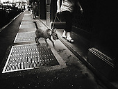 Italy, Lombardy, Milan, Milano, Street Photography, dark, crisis, recession, drama, dramatic, tired, tiredness, weariness, alone, loneliness, desolate, desolation, difficulty, difficult, difficulties, isolation, isolate, isolating, isolates, lonely