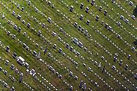 aerial photograph National Cemetery Presidio of San Francisco