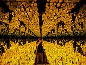 All the Eternal Love I Have for the Pumpkins, Yayoi Kusama Infinity Mirrors exhibit Washington DC 2017