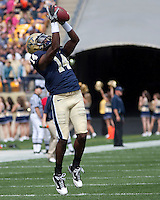 Pitt wide receiver Greg Cross makes a catch in warmups. The Pittsburgh Panthers defeat the New Hampshire Wildcats 38-16 at Heinz Field, Pittsburgh Pennsylvania on September 11, 2010.