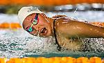 Swimming - Division II Championships 2017