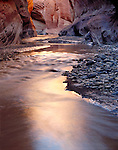 Reflections, Paria River, Paria Canyon/Vermillion Cliffs Wilderness Area, Utah