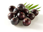 Photos &amp; pictures of the Brazilian acai berries the super fruit anti oxident from the Amazon. Acai berries has been used to help weight loss. Stock fotos
