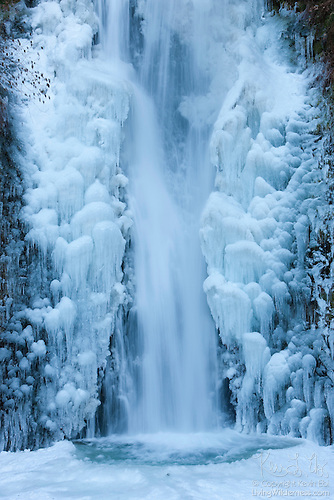 Lower Multnomah Falls in Ice, Columbia River Gorge, Oregon