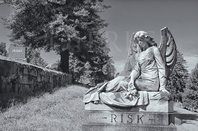 This cemetery landscape image with the sad angel statue was originally taken in color which was then converted to black and white to add to the effect. It has a strong story line running through it, one that is haunting as much as it is daunting with the chances taken in romance.