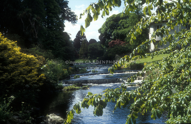 View looking up to the tiered waterfalls in the river at Mount Usher Gardens, County Wicklow, Ireland, through tree leaves and branches, with manor house and lawn visible, in May