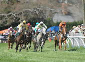 2010 STEEPLECHASE HORSE ARCHIVE -- LISTED ALPHABETICALLY