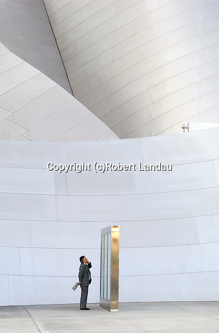 The Walt Disney Concert Hall, downtown Los Angeles, CA