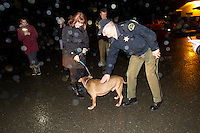 In a dark and rainy parking lot at City Hall in Forks, under the watchful gaze of three police officers, a half-dozen supporters of AARF, and a representative from OAS who handed off the dog, Leroy was reunited with Enajibi at Forks City Hall on December 20, 2013.<br /> <br /> Clallum County Undersheriff Ron Peregrin who leaned over to give Leroy a pet,  had said earlier &ldquo;Its difficult, because when you have laws to follow, its not like we don&rsquo;t have feelings too.&rdquo;<br /> <br /> Owner Steve Markwell Markwell has been under fire for neglecting the dogs after volunteers filed a complaint in 2012. The City of Forks police department investigated and found horrific conditions but said legally they were unable to do anything about it. Markwell claims he has 125 dogs inside and believes he is their last hope.  Many of the dogs were turned over to him by rescues and shelters who deemed them dangerous. Mounting evidence of animal cruelty has prompted many of them to ask for their dogs back.  Markwell refuses and only lets a few trusted volunteers enter the premises.