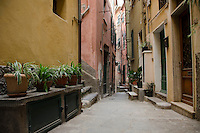 Alleyway in Vernazza Italian Riviera